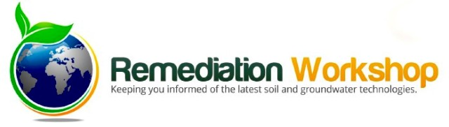 Remediation Workshop Logo Remediation Workshops